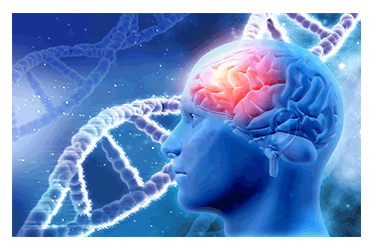 cohort study lipid-dementia